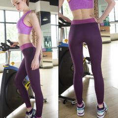 Elastic Fitness Running Leggings